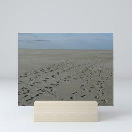The Sandbar Mini Art Print