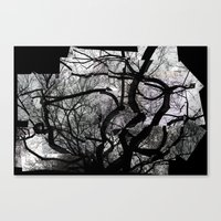 central park Canvas Prints featuring Central Park by Misha Dontsov