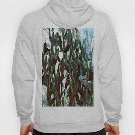 Big cactus Hoody