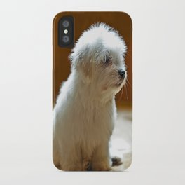 Coton de Tulear Puppy iPhone Case