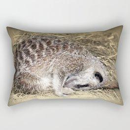 Forty Winks  Rectangular Pillow