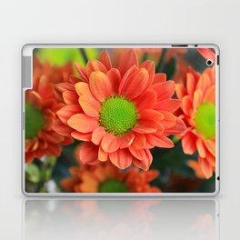 Sunflower Orange Laptop & iPad Skin