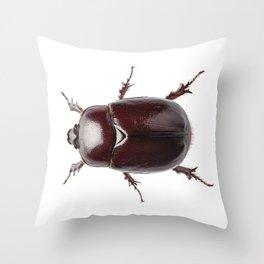 """European rhinoceros beetle female """"Oryctes nasicornis"""" species Throw Pillow"""