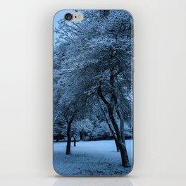 Early Morning Snow, Ravenna Park iPhone Skin