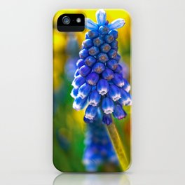 Beautiful Spring  iPhone Case