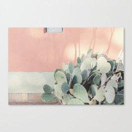 Scenes from Marfa II x Pink Cactus Art Canvas Print