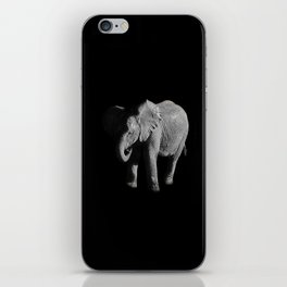 Baby African Elephant iPhone Skin