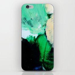Palette No. Twenty Nine iPhone Skin