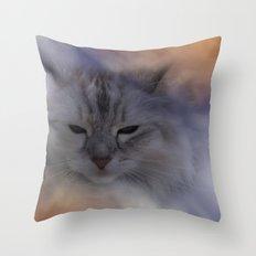a little bit sleepy Throw Pillow