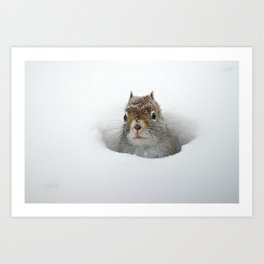 Pop-up Squirrel in the Snow Art Print