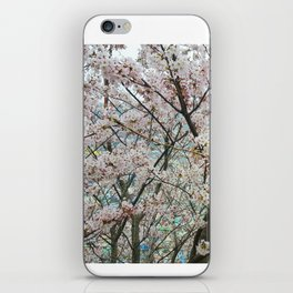Endless Sakura iPhone Skin
