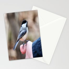 lets feed the birds Stationery Cards