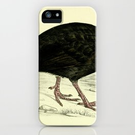 Black Guineafowl iPhone Case