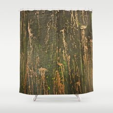 Fence on Copper Street Shower Curtain
