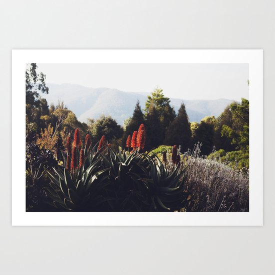 Australian Mountains Art Print