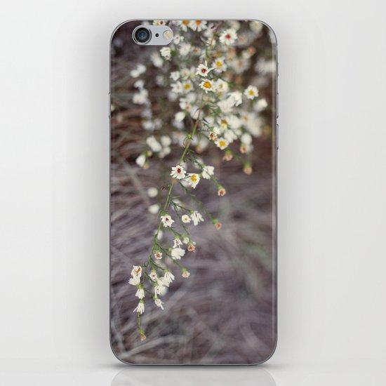 In Autumn iPhone & iPod Skin