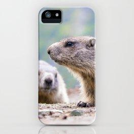 Alpine Marmots iPhone Case