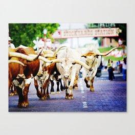 Texas Stockyards Canvas Print