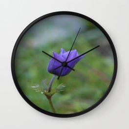Lone Blue-Purple Anemone Wall Clock