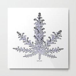 Cannabis Snow Flake Metal Print