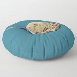 Summer Voyage Floor Pillow