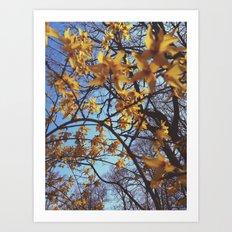 Spring Awakening II Art Print