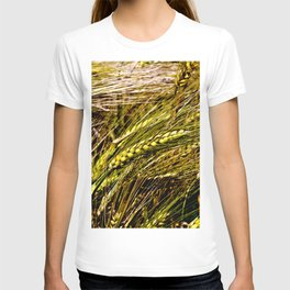 Golden Wheat Field T-shirt