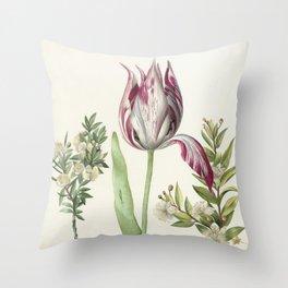 Maria Sibylla Merian Vintage Botanical Tulip and Myrtle Print Throw Pillow