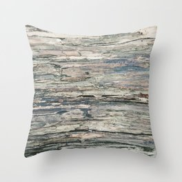 Old Rotten Wood Throw Pillow