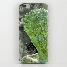 ALTERITY iPhone & iPod Skin