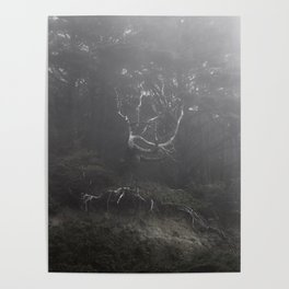 Ghost in the Fog Poster