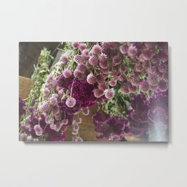 Dried Flowers Metal Print