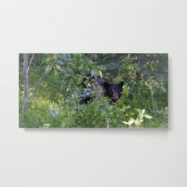 Mother bear hides in the trees- Canadian Rocky Mountains Metal Print
