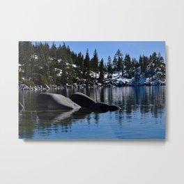 Sand Harbor, Lake Tahoe Metal Print