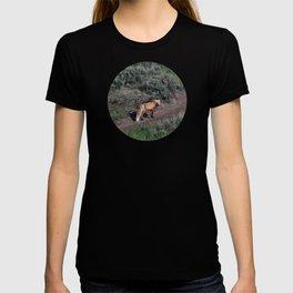 Smirking Fox T-shirt