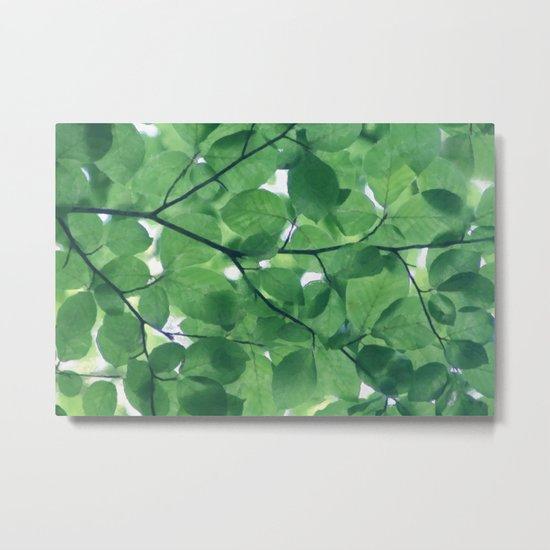Greenery leaves Metal Print