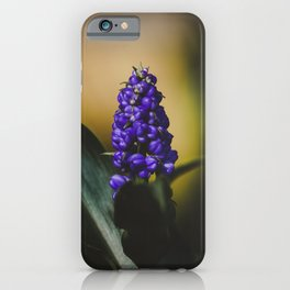 Grape Hyacinths Flower iPhone Case