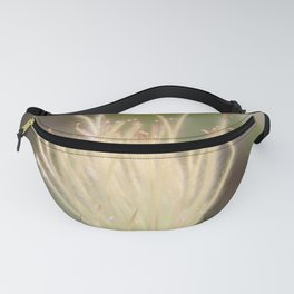 Apache Plume Fanny Pack