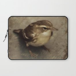First Fall Female Blackburnian Warbler Laptop Sleeve