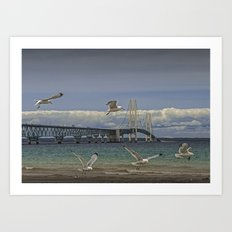 Flock of Gulls Flying by the Bridge at the Straits of Mackinac Art Print