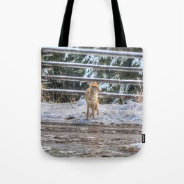 Coyote in Spring Snow Tote Bag