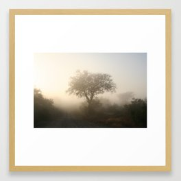 Misty Kruger Park Morning Framed Art Print