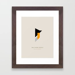 Baltimore Oriole Framed Art Print