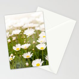 White herb camomiles clump Stationery Cards