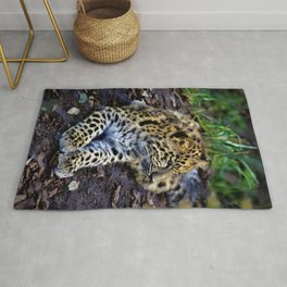 Endangered Amur Leopard Cub by Reay of Light Rug