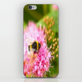 Busy Bee Bzzzzzzz On A Pink Flower #decor #society6 iPhone Skin