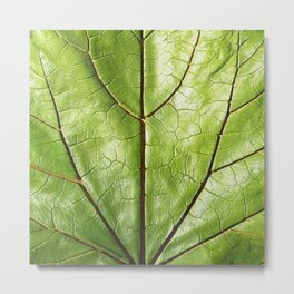 TROPICAL GREEN LEAF WITH  DARK VEINS DESIGN ART Metal Print