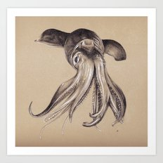 Humboldt Squid #2 Art Print