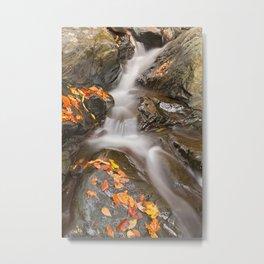 Glen Artney Stream Metal Print