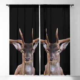 Big Reindeer Head - black background Blackout Curtain